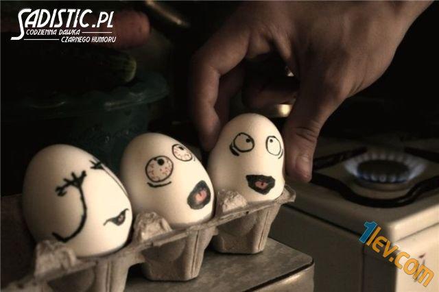 Забавни снимки с яйца - www.1lev.com