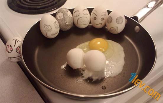 Забавни снимки с яйца -www.1lev.com