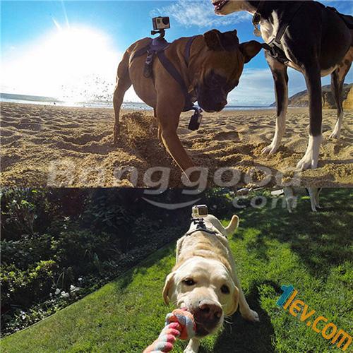 banggood-go-pro-camera